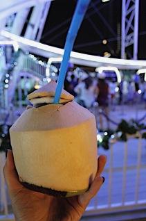 Basic coconut photo
